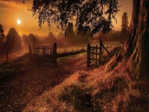Postal: Mirando al sol desde la entrada