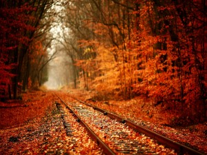Otoño en la vía del tren