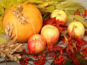 Postal: Manzanas y una calabaza