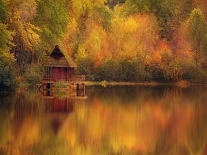 Postal: Cabaña de madera en el lago