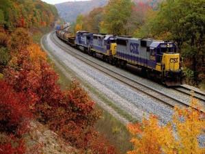 Postal: Tren en un paisaje otoñal