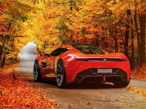 Aston Martin entre árboles otoñales