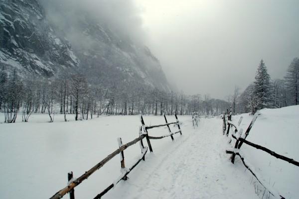 Niebla y nieve