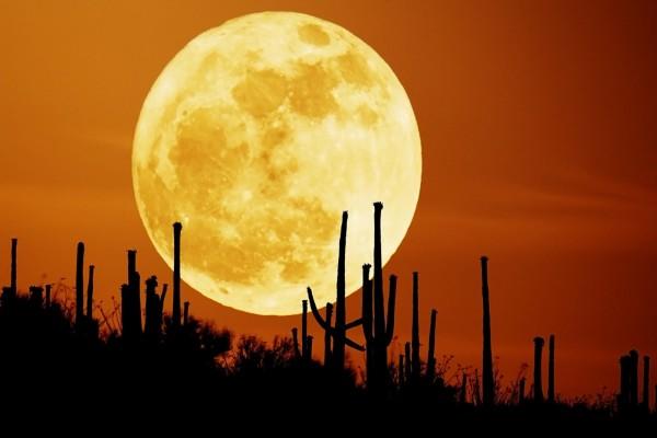 Gran luna llena en el desierto