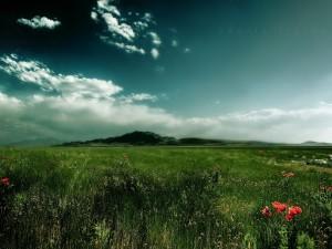 Correr en los campos