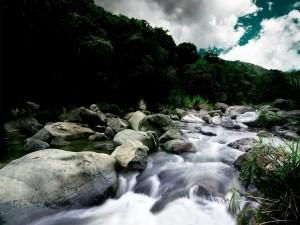 Postal: Piedras en el cauce del río