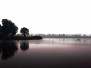 Remando en el tranquilo lago