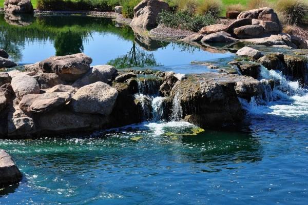 Estanque de agua clara