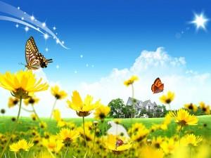 El paraíso de las mariposas