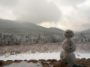 Muñeco de nieve en un bonito lugar