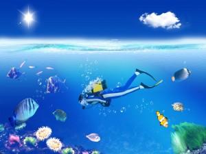 Postal: Buscando a Nemo en el océano