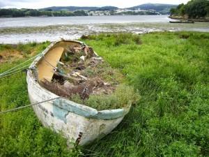 Barca con basura y hierbas