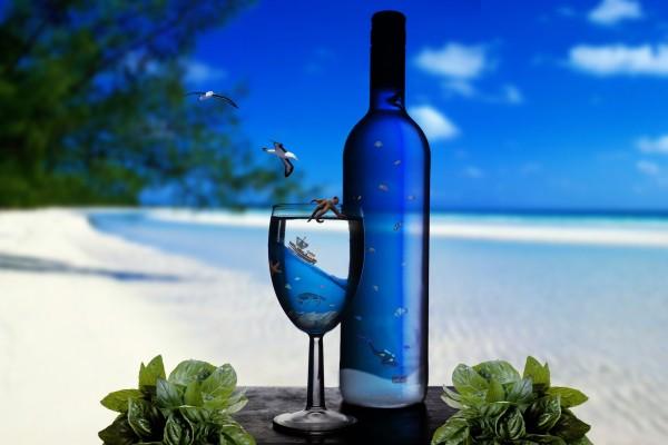 Vida marina en la copa y botella