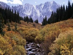 Postal: Manantial que nace en las montañas nevadas
