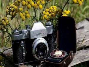 """Cámara """"Zenit-3M"""" cubierta de flores"""