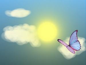 Postal: Mariposa volando hacia el sol