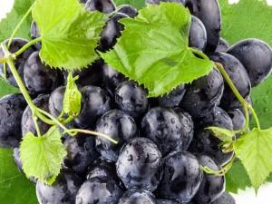 Gotitas de rocío sobre un racimo de uvas