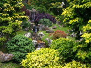 Postal: Pequeña cascada en el jardín