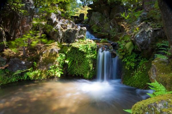 Cascada pequeña en un entorno natural