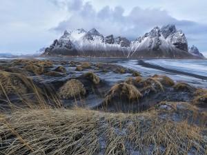 Postal: Observando las montañas con nieve