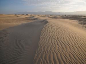 Postal: En las arenas del desierto