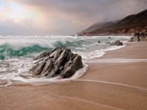 Admirando las olas desde la playa