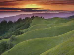 En la montaña verde al atardecer