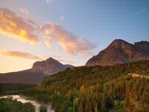 Río entre pinos y montañas