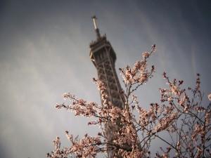 Vista superior de: La Torre Eiffel (París, Francia)