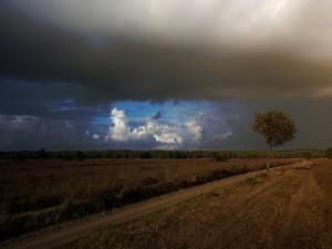 Un campo antes de la tormenta
