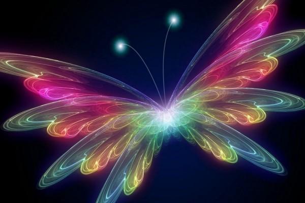 Mariposa con alas de varios colores