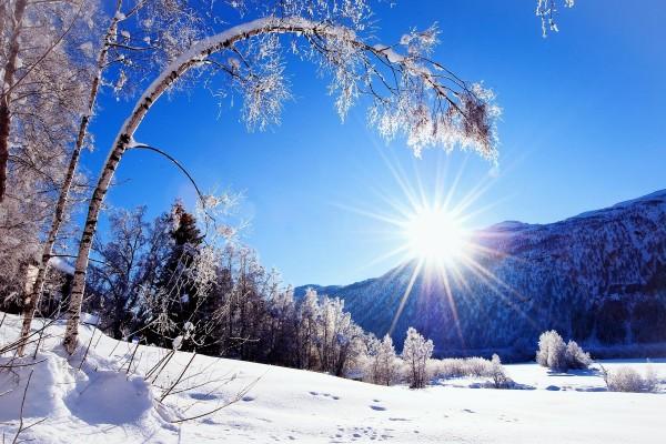 Brillante sol de invierno
