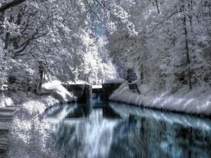 El color blanco junto al río