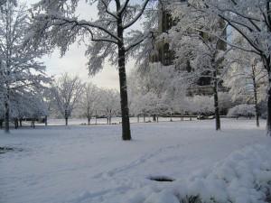 Postal: Nieve en un parque