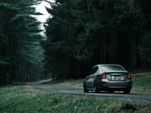 Un coche, en la carretera del bosque