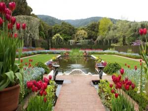 Una fuente con hermosas flores