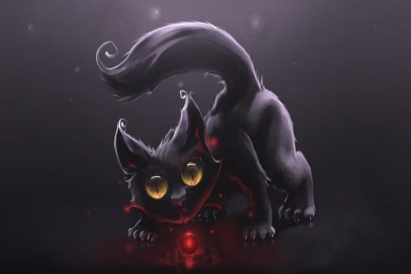Gato negro, mirando a la bola roja