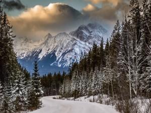 Postal: Nieve en el camino