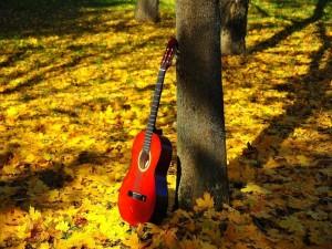 Postal: Guitarra apoyada en el árbol