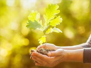 Postal: Día Internacional de la Tierra, 22 de Abril