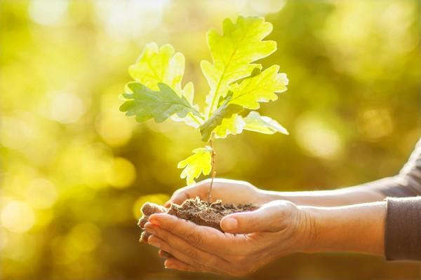 Día Internacional de la Tierra, 22 de Abril