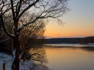Un día frío en el lago