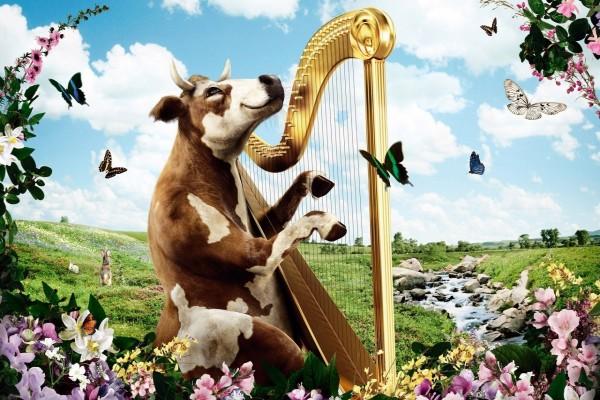 Una vaca tocando el arpa