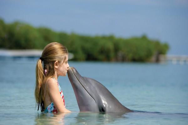 Niña besando al delfín