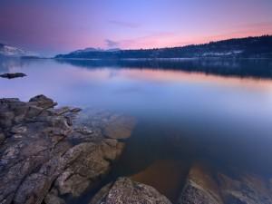 Quietud en el lago