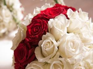 Postal: Ramo de rosas blancas y rojas