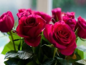 Ramo de rosas de color rojo
