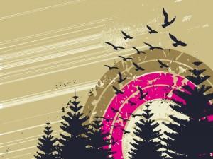 Postal: Aves en la naturaleza