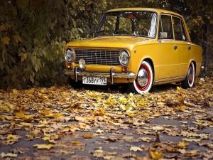 Postal: Coche y hojas otoñales