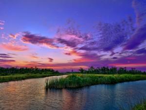 La quietud de la naturaleza